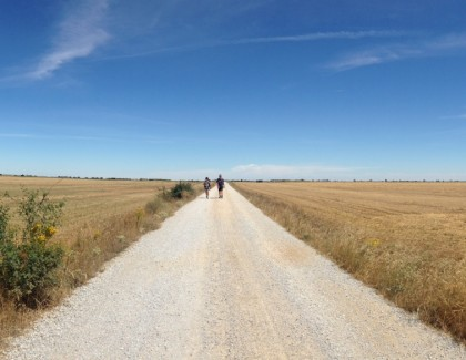Quinto giorno: Da Castrojeriz a Bercianos del Real Camino